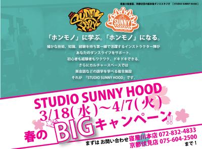 春のBIGキャンペーン!!!STUDIO SUNNY HOOD 本店